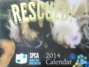 blog calendar 2